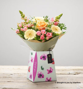 'Peaches and Cream' flowers presented in a floral design gift box - Large peach headed roses, cream germinis, pink antirrhinums, pink spray roses and white tanacetum. (Code: M53400MS)